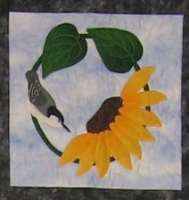 Nuthatch and Sunflower